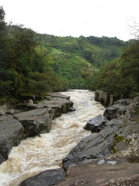マグダレナ川