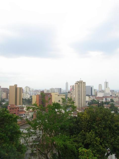 丘からの街の様子