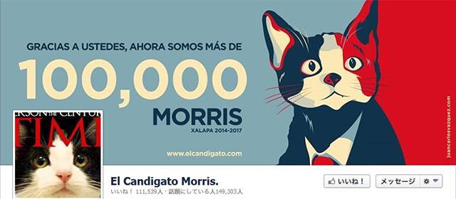 ネコの候補者モリス