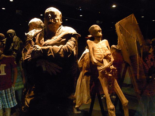 グアナファトのミイラ博物館に展示されているミイラ