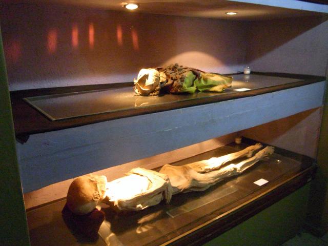グアナファトのミイラ博物館のミイラ