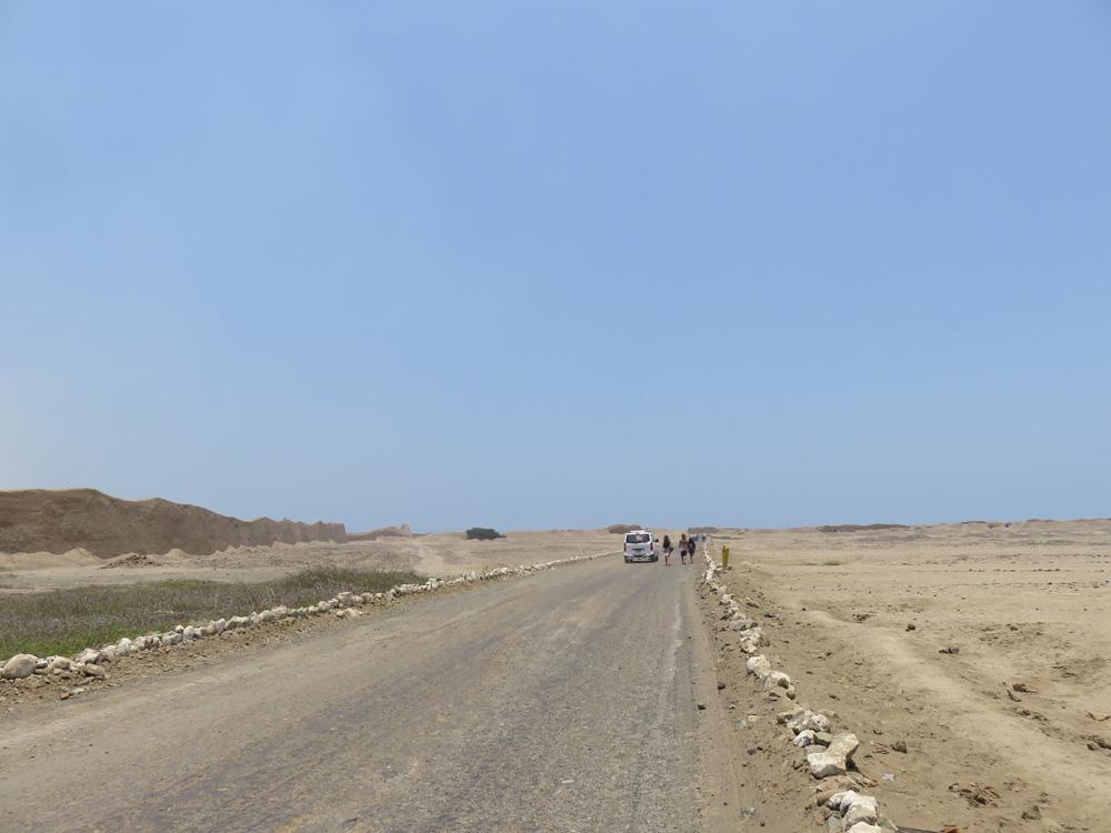 チャンチャン遺跡の入り口までの道