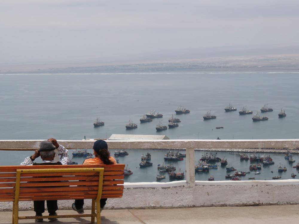 アリカ要塞からの港の景色