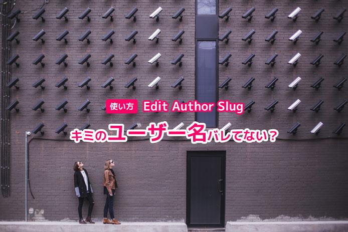 Edit Author Slugの使い方。君のユーザー名バレてない?